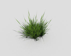 Grass 3D model low-poly
