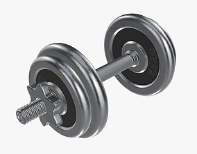 Dumbbell handle and weights 3D