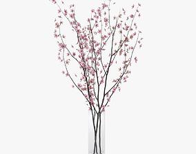 cherry blossom 3D