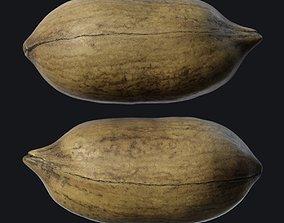3D model Pecan shell A