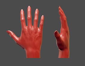Detailed Female Hand Pose Casual 3D Printable