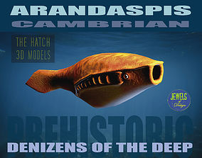 3D asset Arandaspis