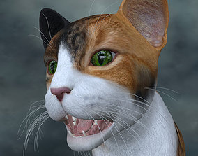 UVWC-019 Textures cat only 3D
