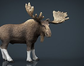 3D model Realistic Elk