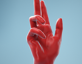 Holistic Gesture Realistic Hand Model 11