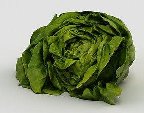 3D model Salad 002