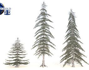 VR / AR ready Lowpoly Conifer Trees 3D Model