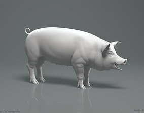 Pig - Highpoly Sculpture 3D model