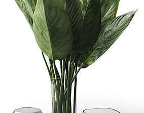 Glass Vases with Leaves 3D