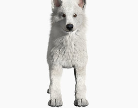 3D asset Wolf baby with realistic fur
