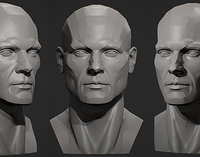 Planes of the head - Male 3D print model