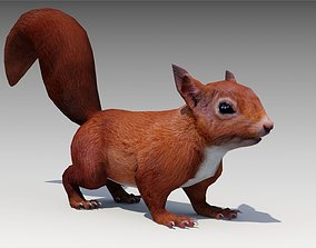 Squirrel 3D asset animated