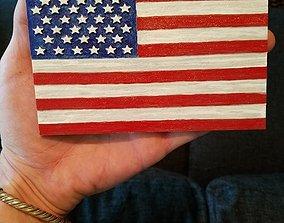 American Flag pride 3D model
