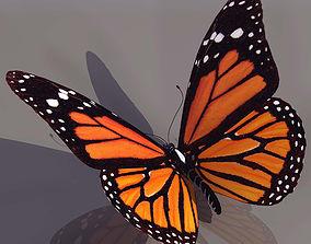 Butterfly metamorphosis 3D