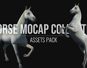 Horse Mocap Collection 3D asset animated