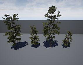 Four pine trees 3D model