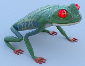 Red Eyed Tree Frog 3D asset