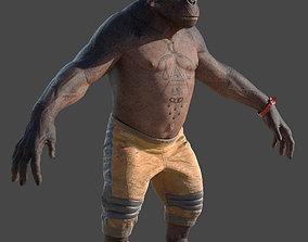 Ape 3D model