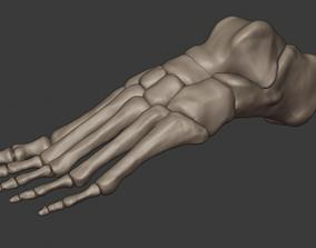 body Foot model