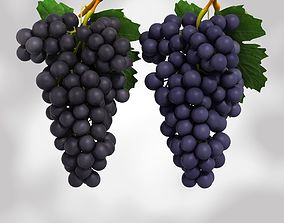 Grapes Black and Blue 3D model VR / AR ready