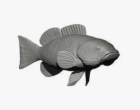 Fish Sculpture 3D printable model