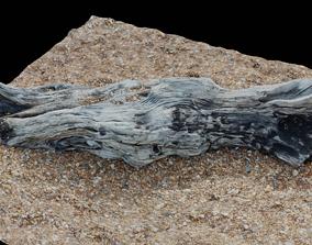 3D asset Ultra realistic wooden log on pebbles 8k HD