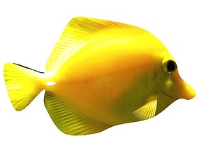 3D model Yellow Tang Tropical Fish