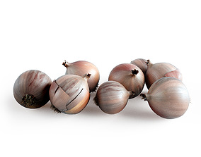 Onions 3d model Vray shaders