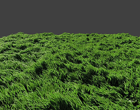 3D Grass waving in wind