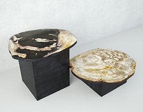 Petrified Wood Slice Coffee Tables 4 3D