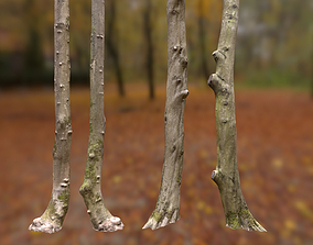 5 Forest Dry trees 3D asset