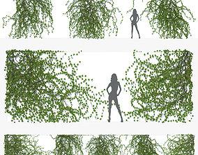 Ivy Wall 05 3D model