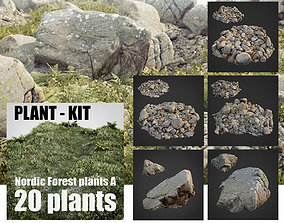 rocky nature bundle 001 3D asset