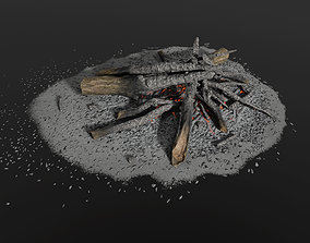 Camp Fire 3D asset realtime