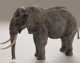 3D model realtime PBR Elephant