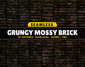 3D model Texture Pack Seamless Grungy Mossy Brick Vol 01