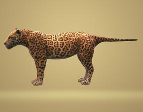 Jaguar 3D Animation animated low-poly
