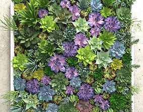 Succulents wall 3D