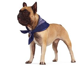 French Bulldog 3D model low-poly
