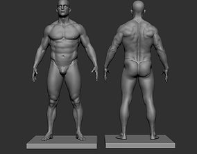 Male model reference Anatomy female