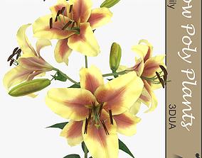 3D asset Lily flower
