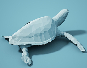 zoology Low Poly Turtle Model