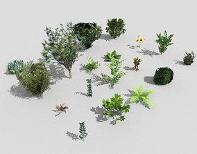 3D asset low poly foliage pack