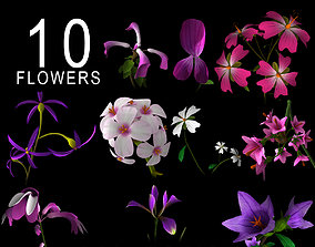 nature ANIMATED FLOWERS COLLECTION 3D model