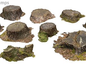 3D model Woodland Photoscan Objects - tree stumps only