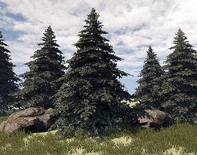 3D asset Fir Tree