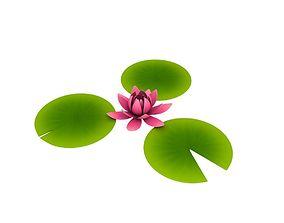3D Lotus lotus