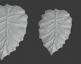 3D printable model Yaprak Tepsi Seti Leaf Tray Set