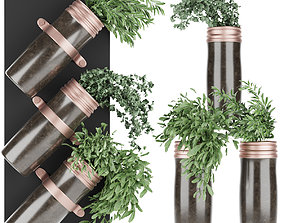 Collection plant vol 64 3D model