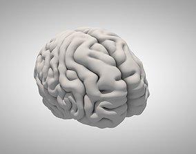 3D model intellectual Brain